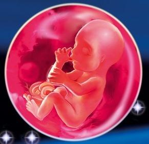 Săptămâna 21 de sarcina