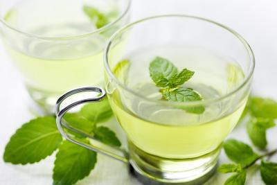 ceaiul de mentă în sarcina