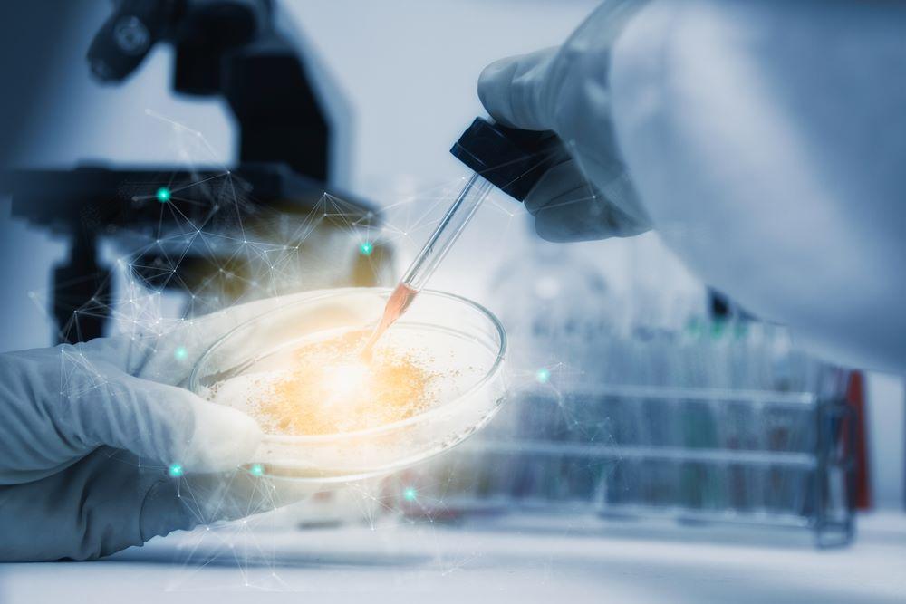 proprietati celule stem