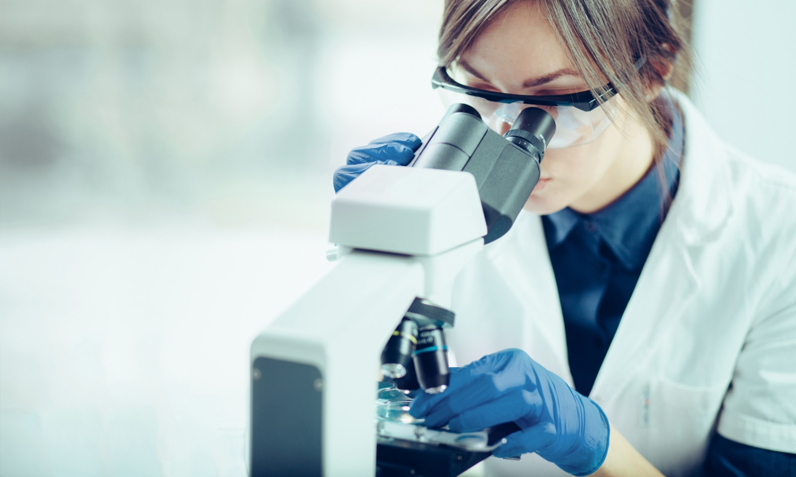 recoltare celule stem