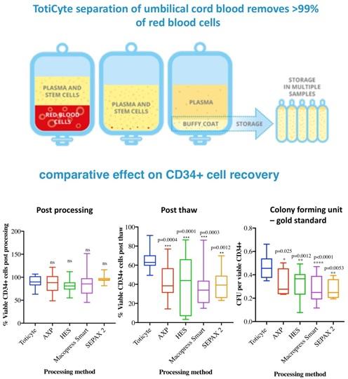 toticyte celule stem